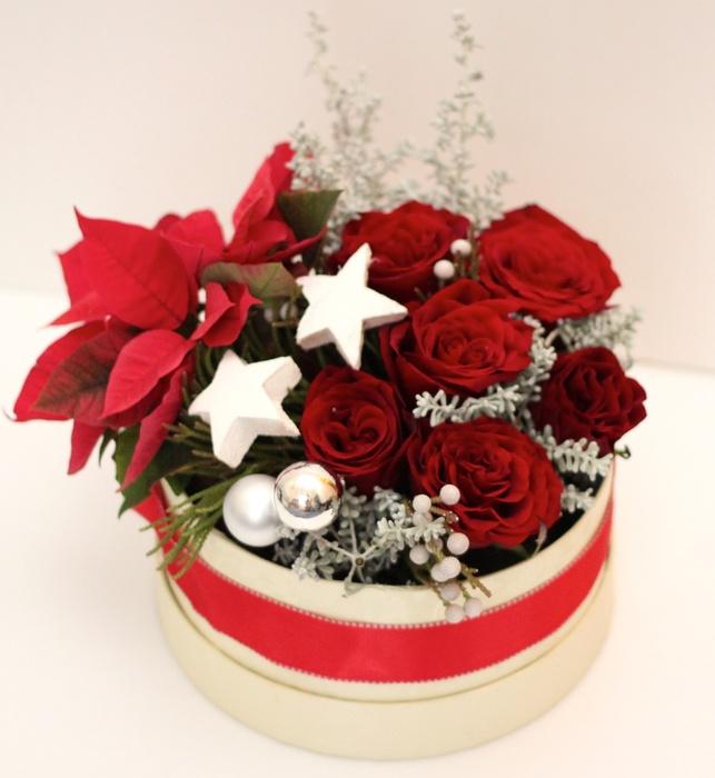 Christmas flower in box