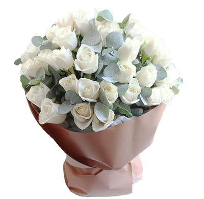 50 american white roses for valentine's day, Ideas